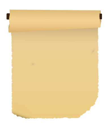 Paper scroll. Vector.