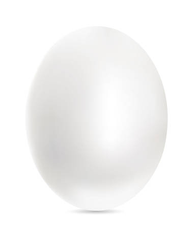 Silver egg on white background.
