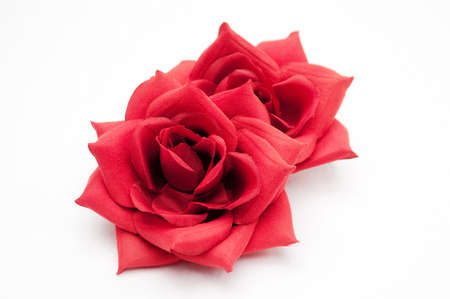 indispensable: Red Rose which is indispensable to the wedding, marriage