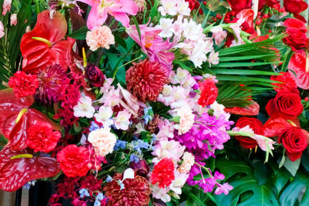 Brilliant and graceful flowers with colorful color decoration
