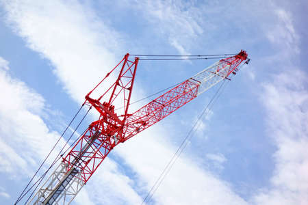 Architectural crane flying in the sky