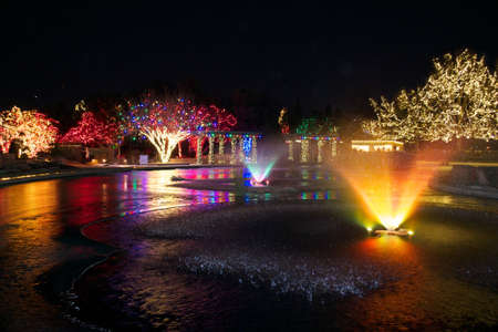Christmas Lights On Pond