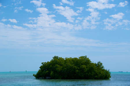 A beautiful, lush, green island off the coast of Key West