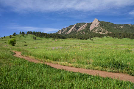 Beautiful Flatirons in Boulder, Colorado with blooming lupines Stock Photo