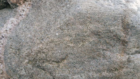 erratic: Surface of a glacial erratic of granite, usable as texture or background