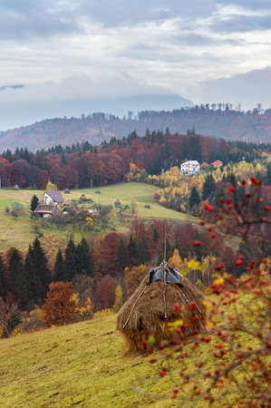 Idyllic autumn landscape in the countryside in Romania. Stack of hay, rosehip and misty hills and mountains.