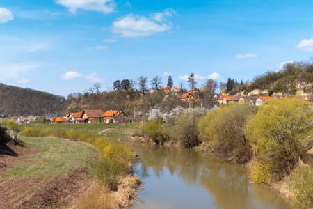 Spring landscape with the river Tarnava Mare running through the city of Sighisoara. Small houses with orange rooftops and blooming trees