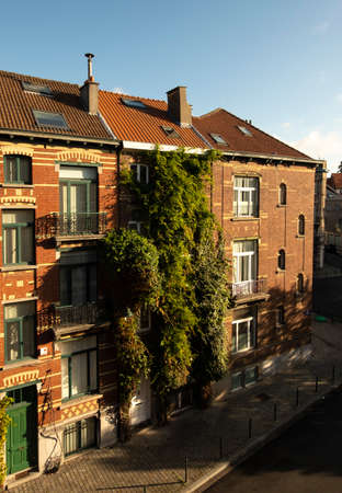 Beautiful brick house covered in luscious vegetation in Brussels 写真素材
