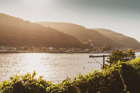 Sunrise light over the Rhine river and the village Assmannshausen, famed for its red wine made from Pinot Noir.
