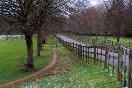 Alley and wooden fence in Cranford Park on an overcast day after a mild snowfall in March. 写真素材