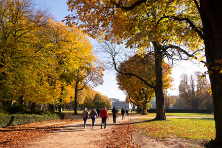 Autumn morning in Cinquantenaire park with people strolling on alleys. Redactioneel