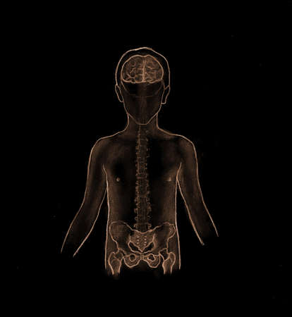 human's arm: Child Anatomy