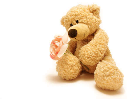 an adorable:           teddy-bear giving rose                        Stock Photo