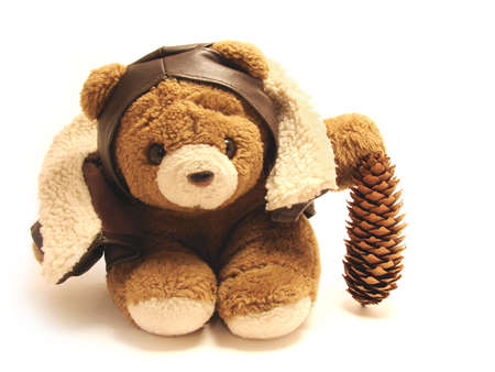 spruse:  teddy bear as a pilot holding a spruse cone isolated in white