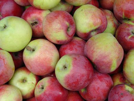 apples Imagens