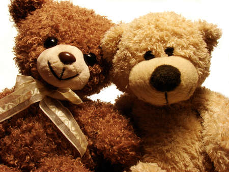 portret of two teddy-bears                          photo