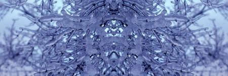 ice&nature horizontal decoration Imagens