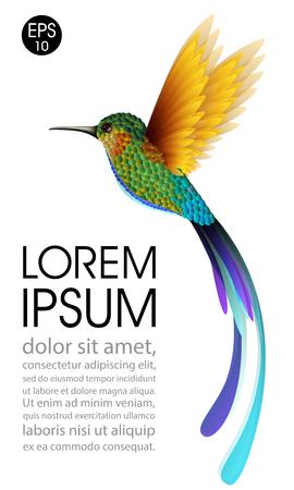 Kolibrie. Vector illustratie van exotische vliegende Colibri-vogel die op witte achtergrond wordt geïsoleerd