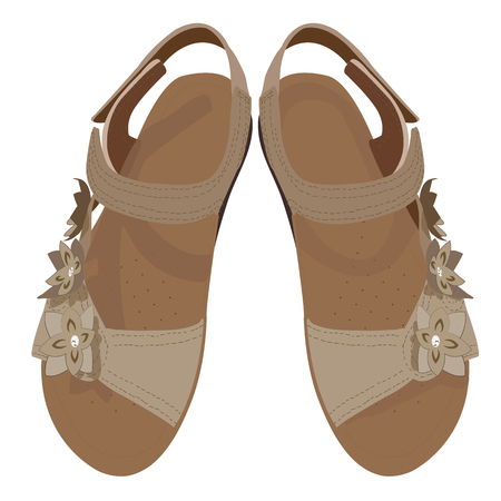 Light brown sandals vector, view from above. Summer womans shoes in beige color. Womans sandals in beige color. Illustration