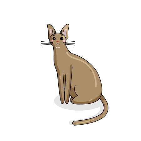 Vector Character of Chausi Cat in Kawaii Style. Cute Cartoon Kitty Character. Funny Kitten isolated on White Background. Sticker of Kawaii Animal, Pet. Flat design. Usable for Childrens Book Illustration