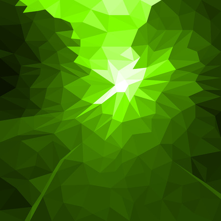 Vector Abstract Green Background of Flash or Light. Geometric Fond with Blur Effect. Illustration of Futuristic Fond in LowPoly Style. Tech Template. Tech backdrop. Concept for Graphic Design