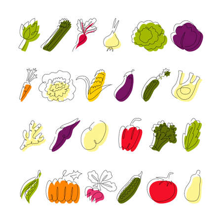 Vegetable continuous line drawing collection isolated on white. Simple single outline sketch and color. Fresh food vegan design elements. Vector minimalistic flat contour illustration made of one line 向量圖像