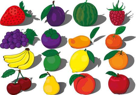 Fruits berries vector tropical sweet fresh banana watermelon mango cherry peach