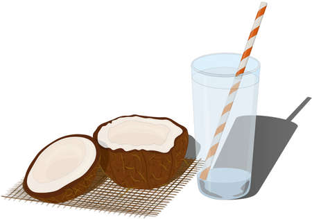 Glass of fresh coconut juice water and cutted coconut vector illustration