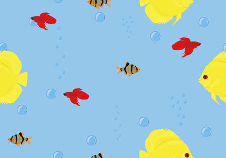 Seamless background tropical fish discus, betta, barbus on blue color