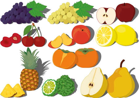 Fresh sweet fruits collection vector illustration Vectores