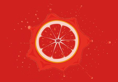 Grapefruit slice falls in juice splash vector illustration Vectores