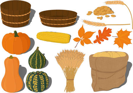 Harvest festival or thanksgiving day collection vector illustration Vectores