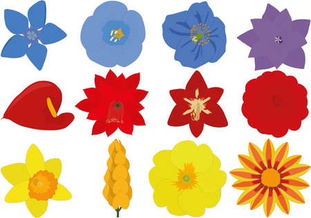 Bright blue, red and yellow flowers collection vector illustration Vectores