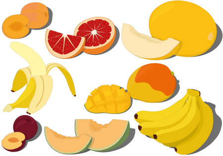 Sweet ripe fruits collection vector illustration Vectores
