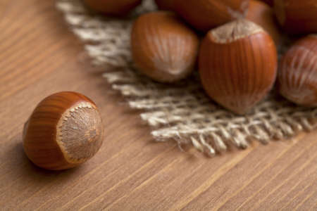 hazelnuts Stock Photo - 13867396