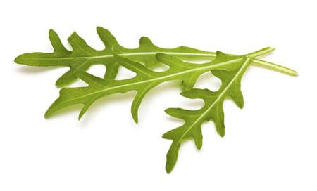 fresh rucola leafs isolated on white background photo