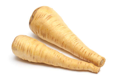 harvests: two fresh parsnip roots on a white background