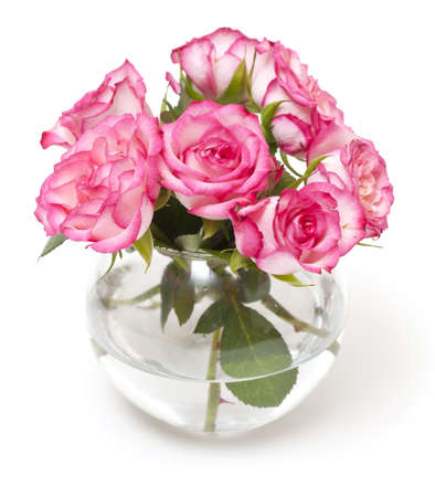 pink roses in vase isolated on white photo