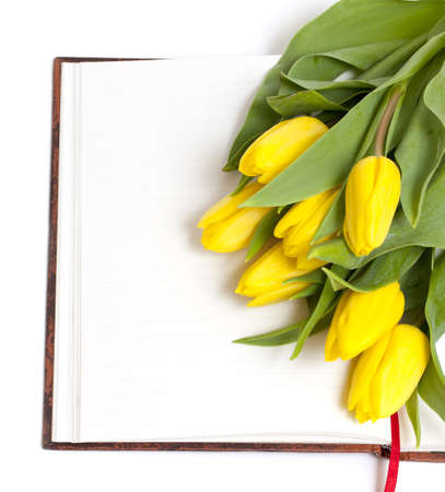 open book and yellow tulips on it isolated on white background photo