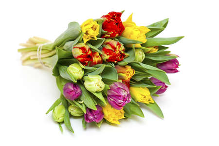 beautiful bouquet of fresh and colorful tulips isolated on white photo