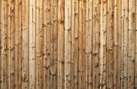 wood texture Stock Photo - 13935556