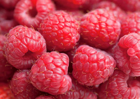 raspberry background photo