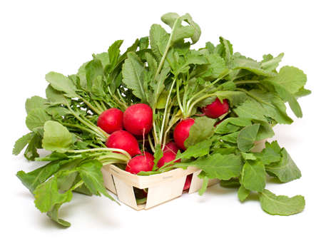 fresh radish on a basket isolated on white background photo
