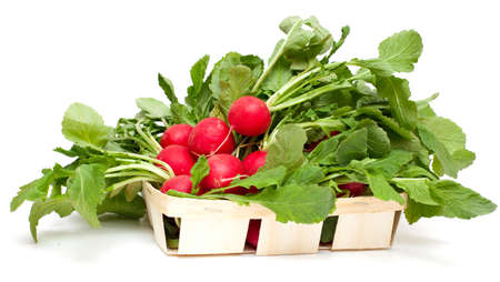 fresh radish in basket isolated on white photo