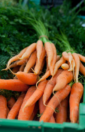 fresh carrots at farmer's market Stock Photo - 13935685