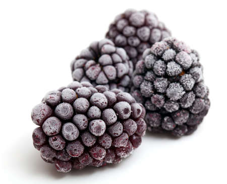 frozen blackberries isolated on white background photo