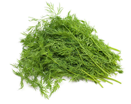 dill isolated on white background photo