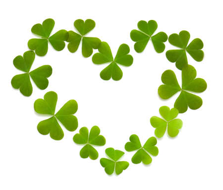 st  patty: heart made of clover isolated on white Stock Photo