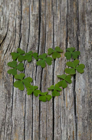 clover heart on wooden surface photo