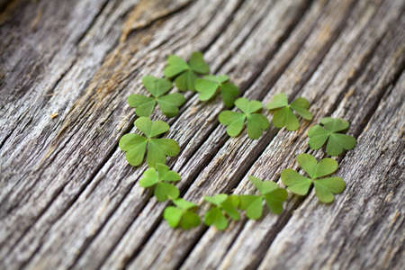 clover heart on wooden background Stock Photo - 14244911